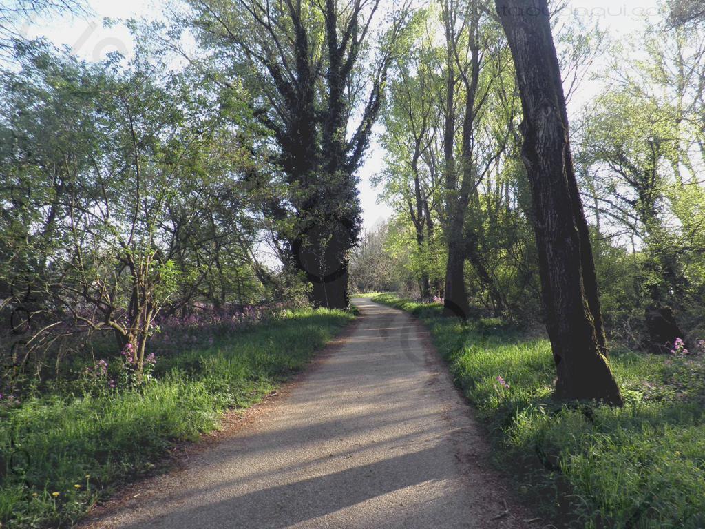 photographie prise le long de l'EuroVelo 17 près de La Voulte-sur-Rhône