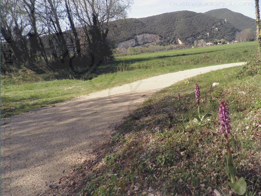 photographie prise le long de l'EuroVelo 17 près de Pierrelatte