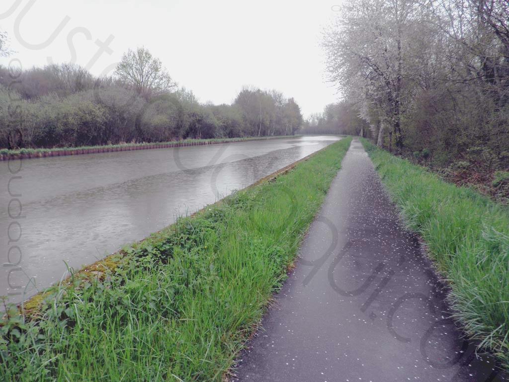 picture taken along the EuroVelo 6 near Diou