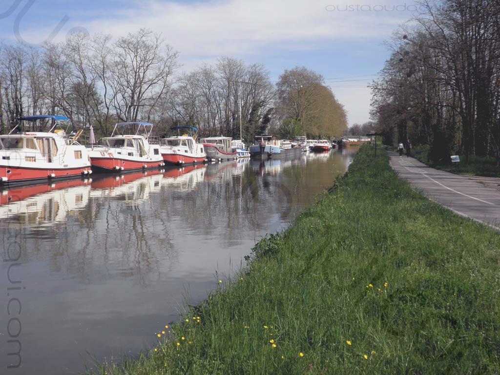 picture taken along the EuroVelo 6 near Chagny