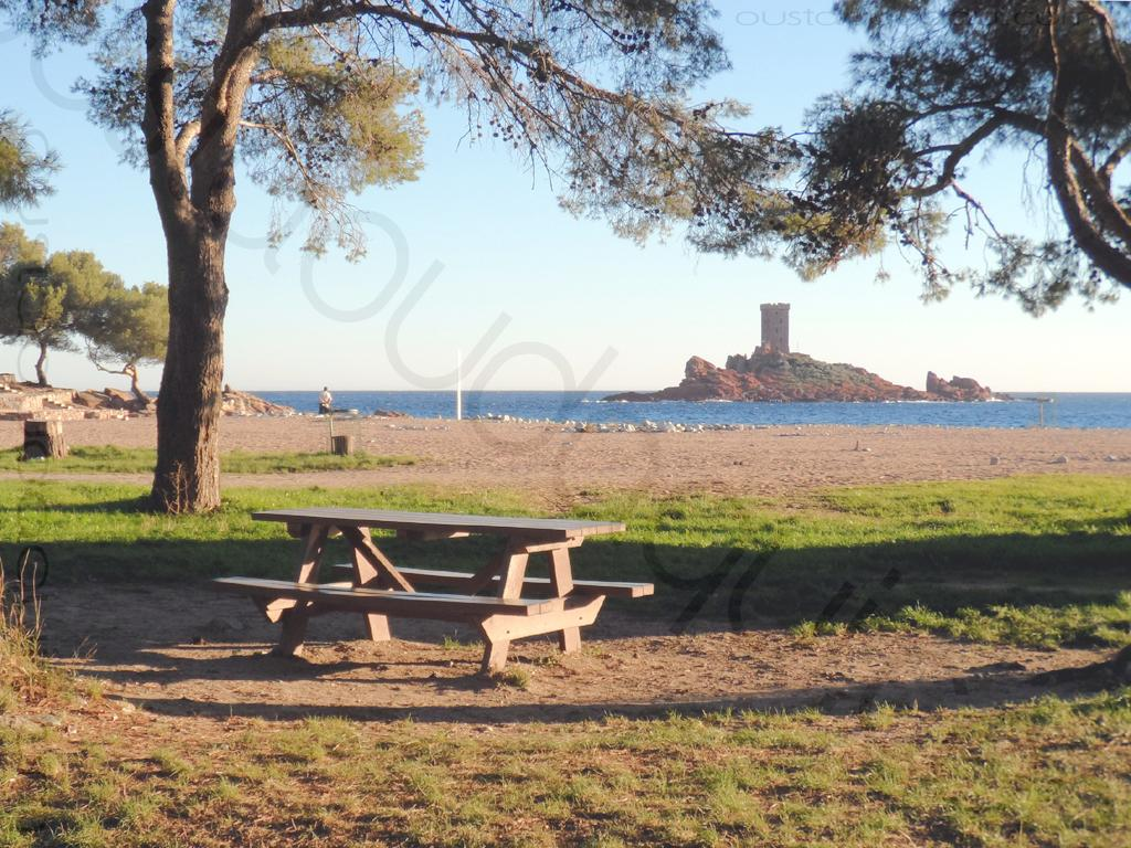 picnic-facilities-beach